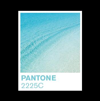 pantone-2225C