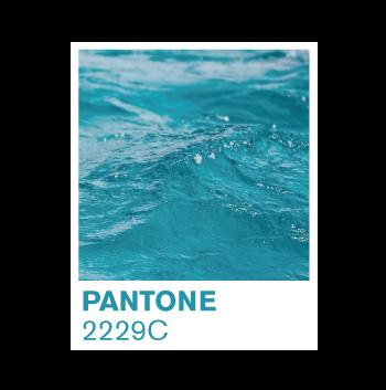 pantone-2229C